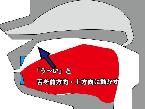 口笛高音の出し方イメージ 舌を「う~い」のように前方向・上方向に移動させる